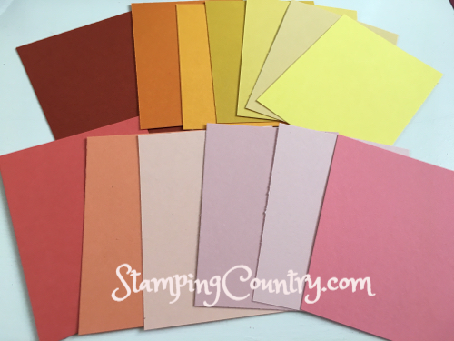 Stampin' Up! Color RevampS