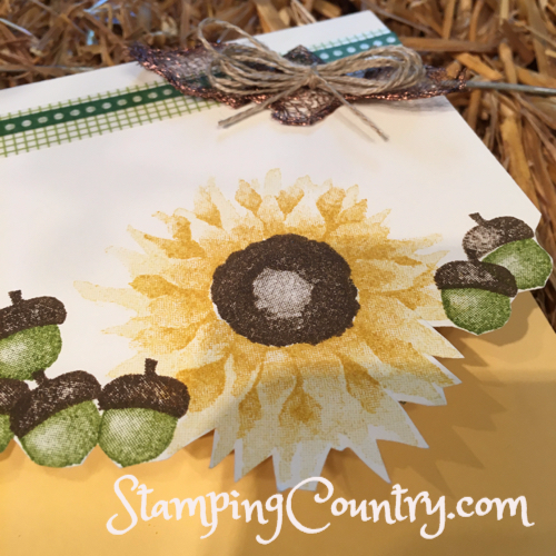 Painted Harvest Stampin' Up!