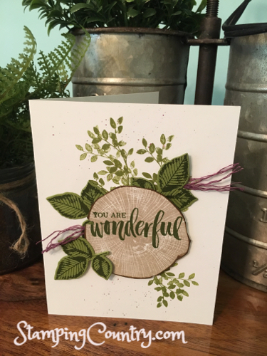 Rooted In Nature Sneak Peek Stamping Country