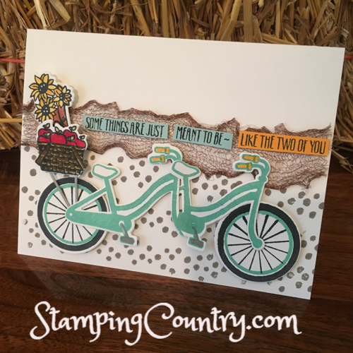 Tandem Bike Anniversary Card