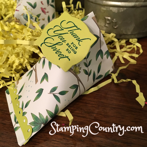 Little Green Frog Treat Container