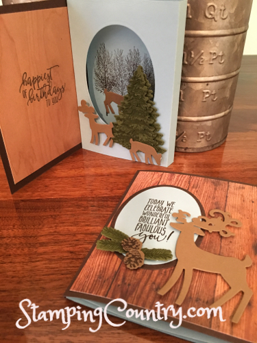 Dashing Deer Shadow Box Card