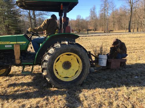 Bryan & Joe Tree Planting