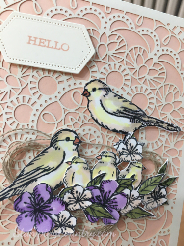 Free As a Bird Stampin' Up!