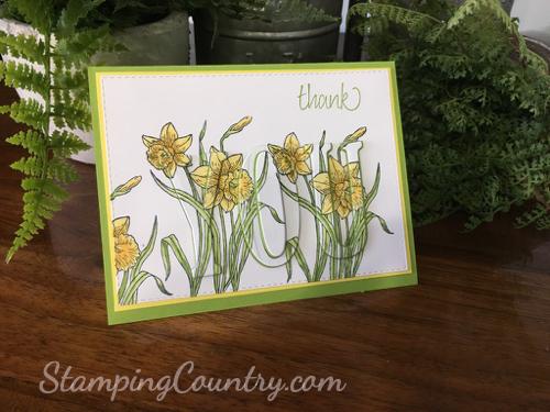 Daffodil Eclipse Card