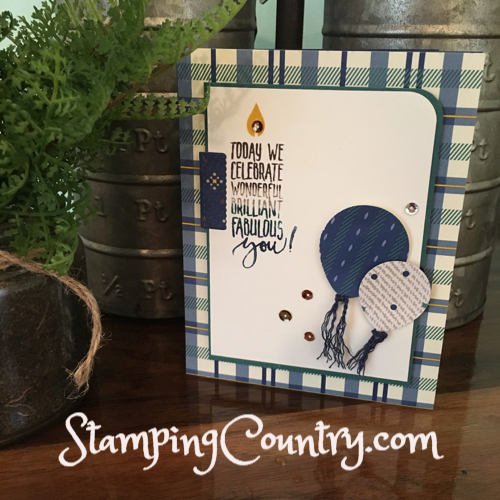 Picture Perfect Birthday Stampin' Up!