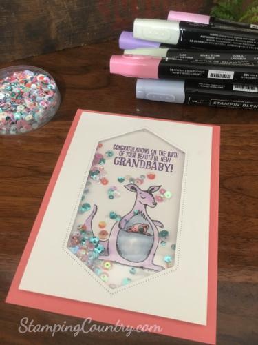 Handmade Baby Shaker Card
