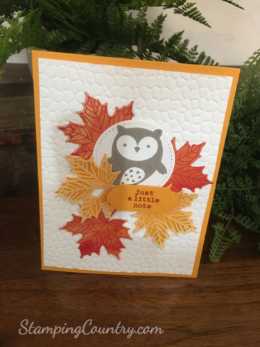Check You Out Stampin' Up!