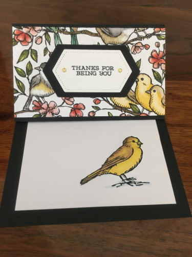 Fancy Fold Card Raemarie Oatman