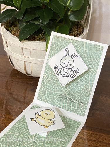 Double Pop Up Baby Card