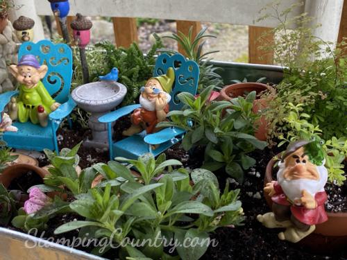 7 Dwarfs Fairy Garden