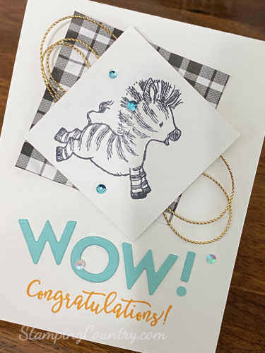 Zany Zebras Stampin' Up!