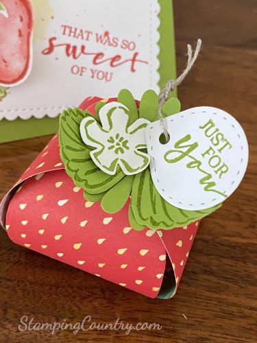 Berry Delightful Stampin' Up!