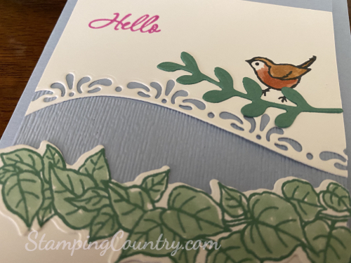 Curvy Celebrations Stampin' Up!