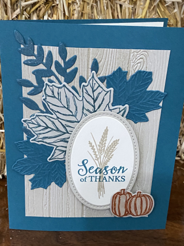 Kathryn Coy Stampin' Up! Demonstrator