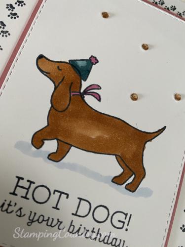 Hot Dog Stampin' Up!